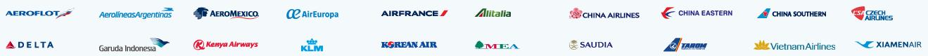 スカイチーム航空会社ロゴ