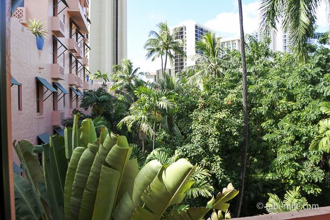 ハワイロイヤルハワイアンホテル部屋ヒストリックガーデン景色