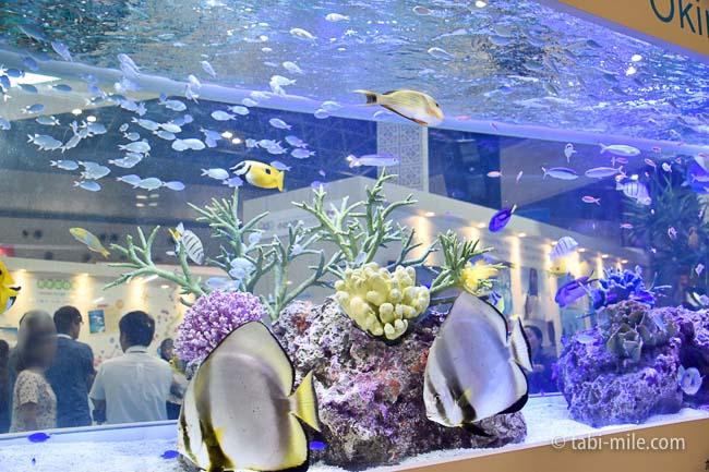 ツーリヅムEXPOジャパン2016沖縄美ら海水族館