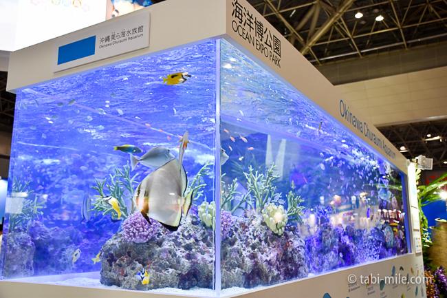 ツーリヅムEXPOジャパン2016沖縄