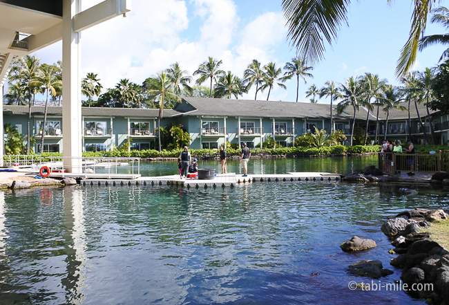 カハラホテルレストラン前ビーチ