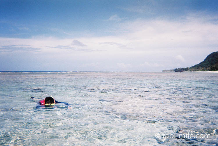 FUJIFILM レンズ付フイルム フジカラー 写ルンです 防水タイプ 27枚撮り 08