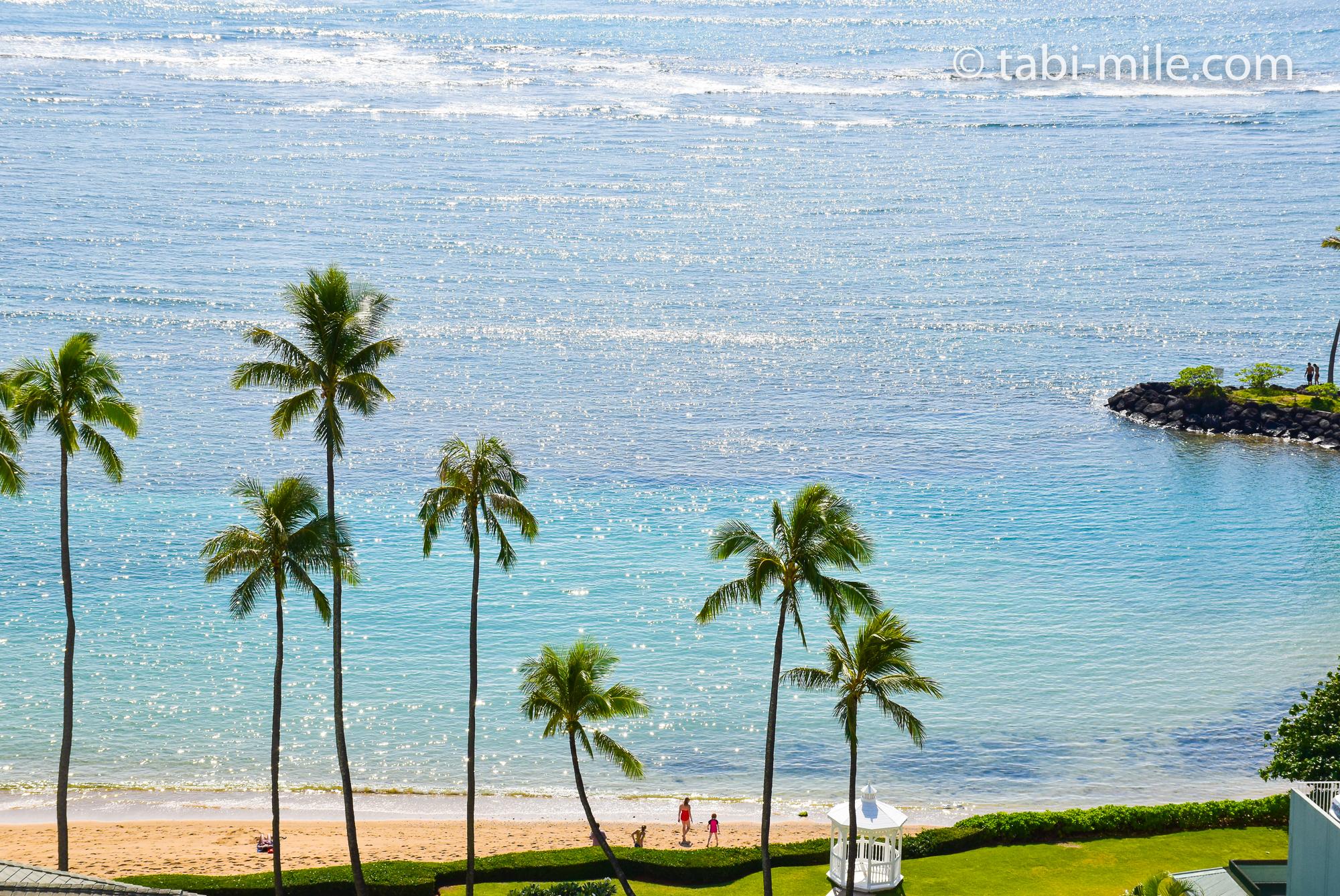 ヘッダー画像 ハワイ