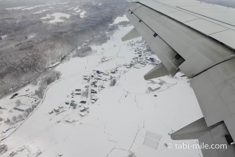 JAL国内線 雪景色