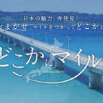 JALどこかにマイルトップ 橋