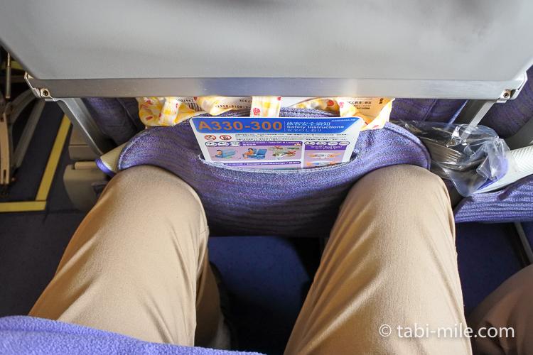 チャイナエアライン 後方座席広さ 男性