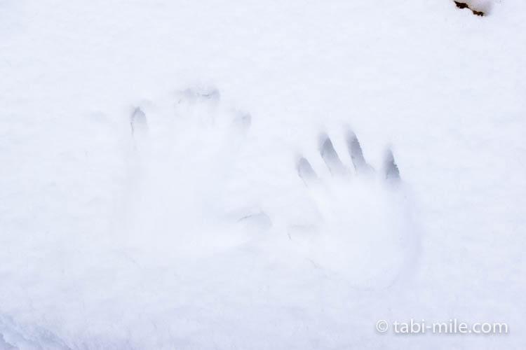 青森旅行 弘前 弘前公園 手形