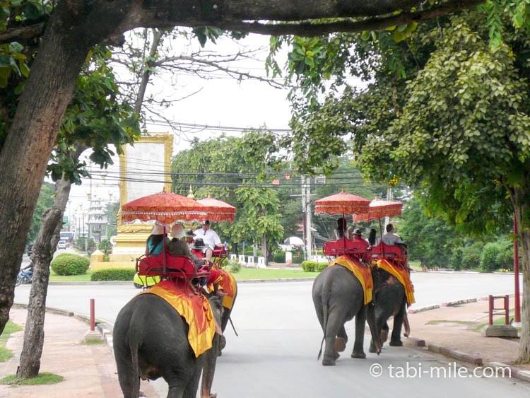 タイ 象乗り