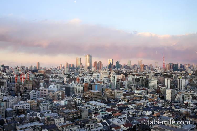 ウェスティンホテル東京 エグゼクティブクラブラウンジ 窓からの景色昼間