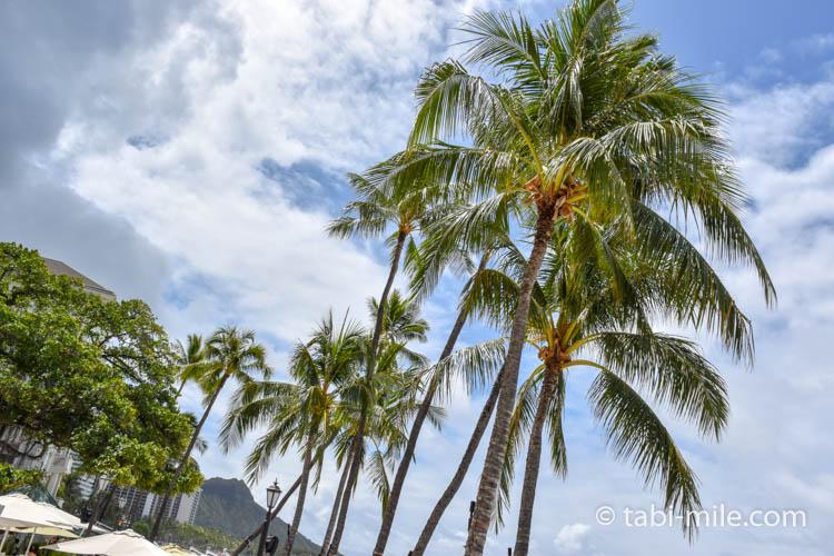 ハワイワイキキモアナサーフライダー ワイキキビーチ