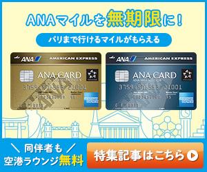 ANAアメックス-07_300x250