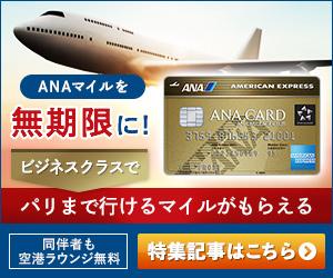 ANAアメックス-07_300x250-09_300x250