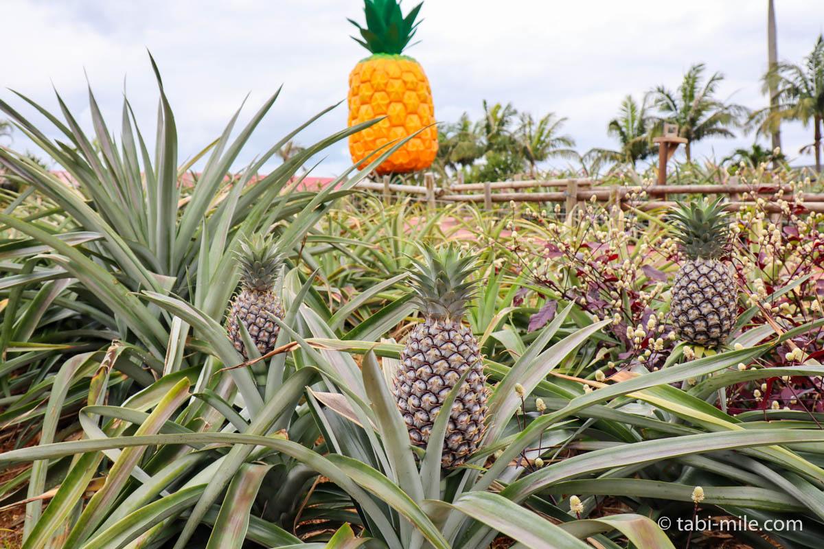 ナゴパイナップルパーク 、大きなパイナップルの置物