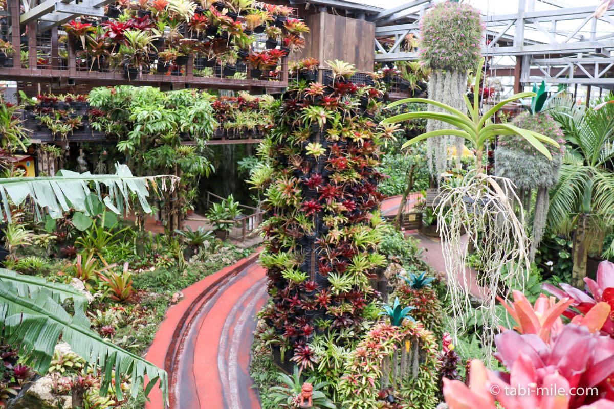 ナゴパイナップルパーク 、花