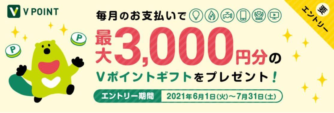毎月のお支払いを三井住友カードに新規登録して、最大3,000円分のVポイントギフトをプレゼント!