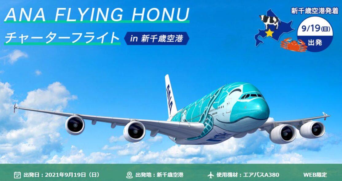 フライング・ホヌ札幌で遊覧フライト