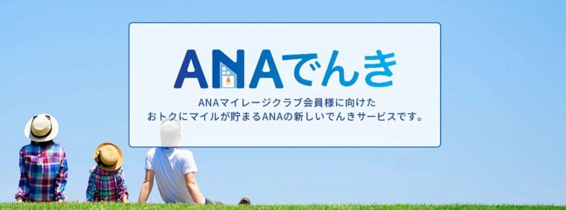 ANA電気で毎月300マイル